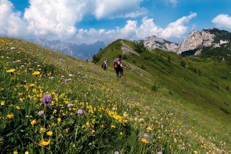 trekkers on the path between Chiansaveit pass and Casera Chiansaveit (Chiansaveit Alm), Forni di Sopra, Udine province, Italia, Italy