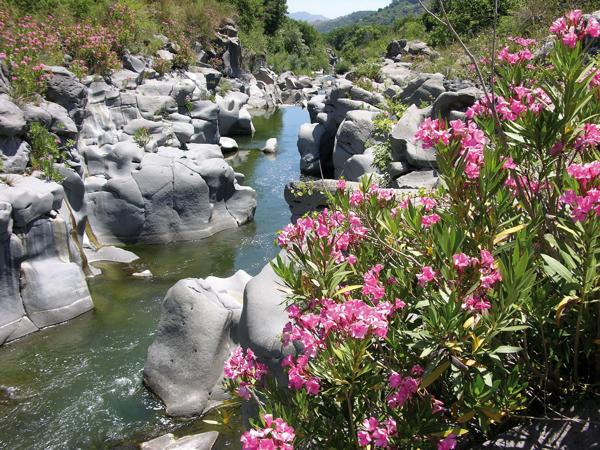 fiume Alcantara