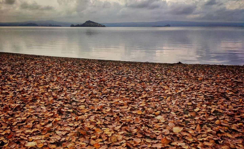 escursione sul Lago di Bolsena